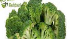 Brokoli Yararları
