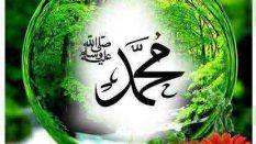 Allah(c.c.)'ın Kudret ve Hayat Sıfatı