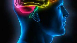 Harama Bakmak Hafızayı Zayıflatır